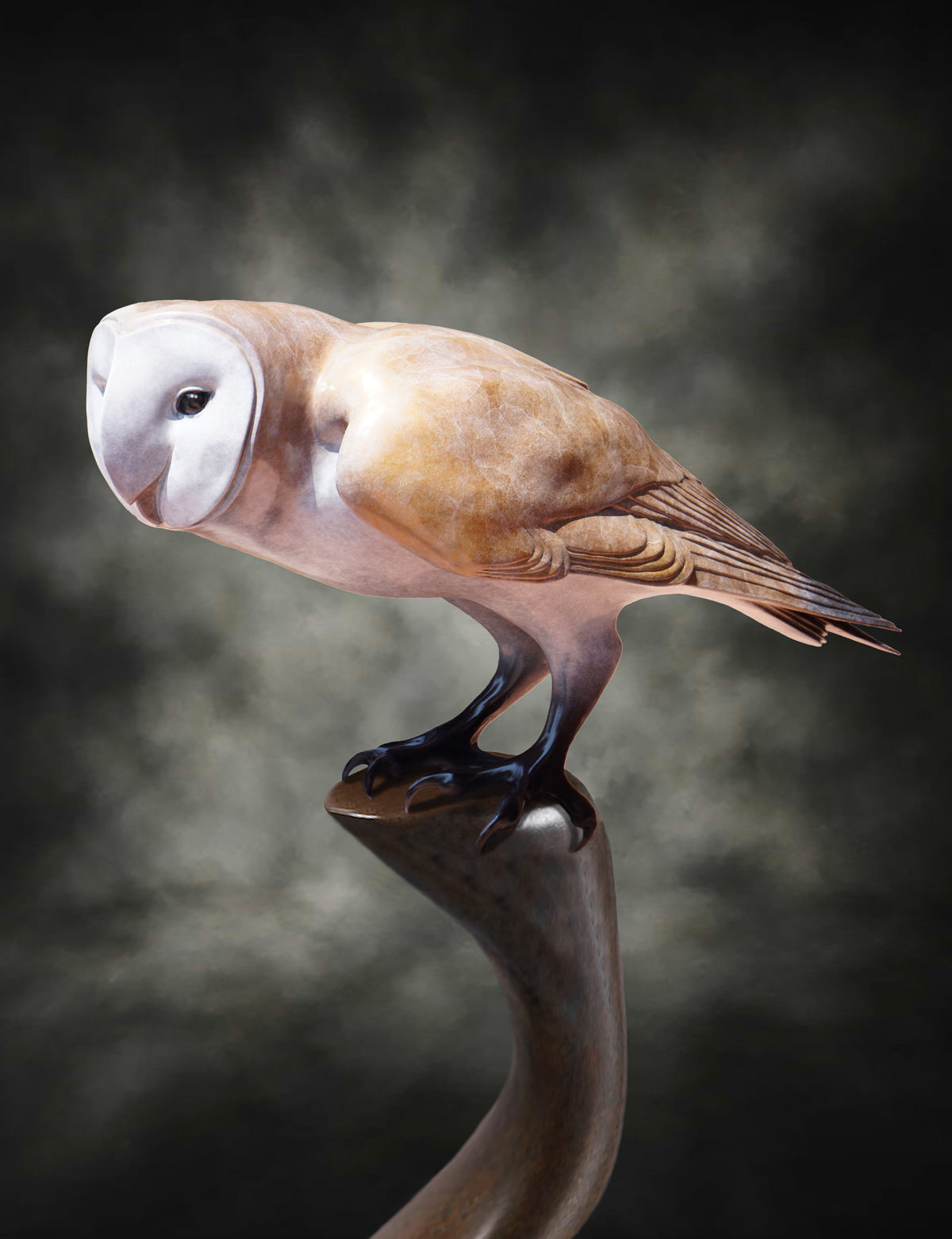 Test soderberg gallery studio i am deeply inspired to sculpt birds and the graceful barn owl will always hold a special place in my heart buycottarizona
